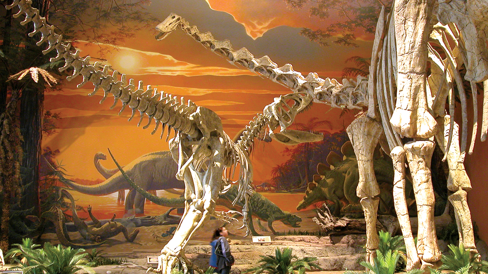 New Mexico Museum of Natural History & Science
